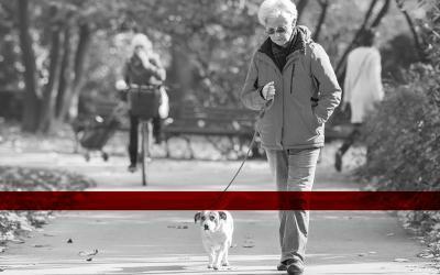 Cartilagine del ginocchio: la cura con la medicina rigenerativa